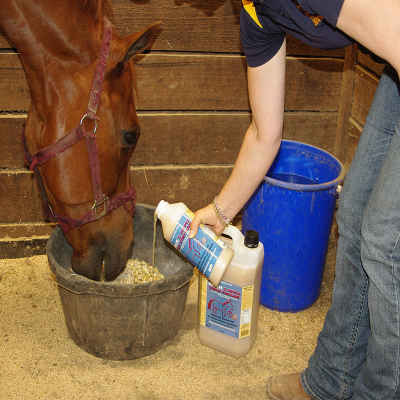 Apple Cider Vinegar In A Horse Water Trough