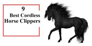 Best Cordless Horse Clippers