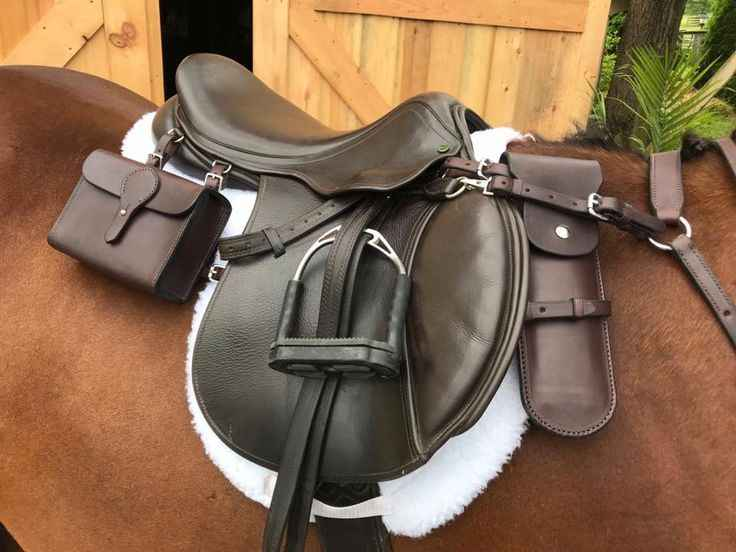 Best Horse Saddle for Hunting