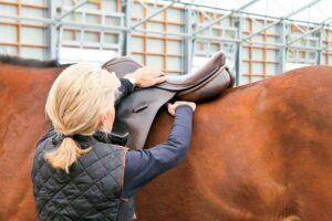 Best Horse Saddle for Lower Back Pain