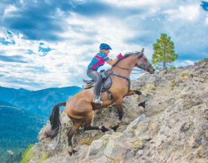 Best Horse Saddle for Mountain Riding