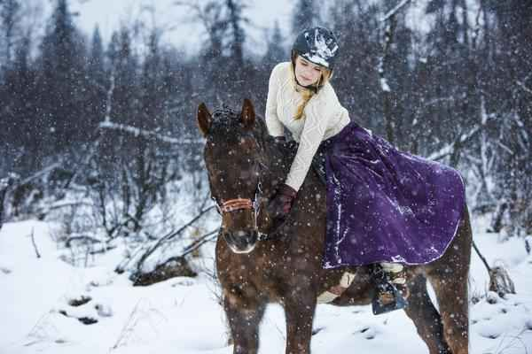 Best Winter Riding Boot for Horses