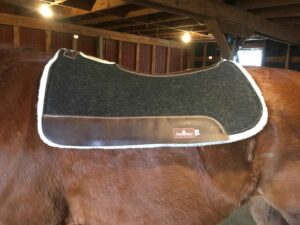 Best Western Saddle Pad for High Withered Horse