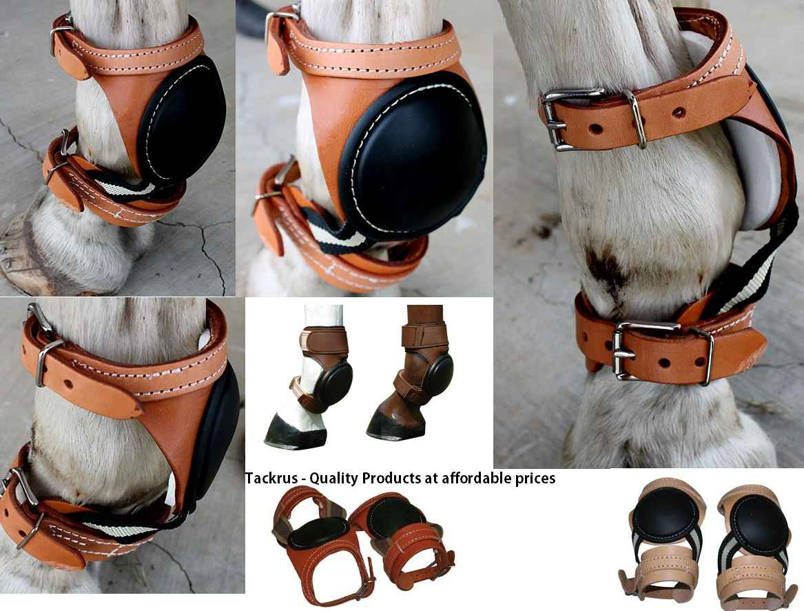 Best Skid Boots for Horses