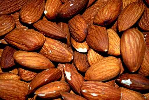 Can Horses eat Almonds