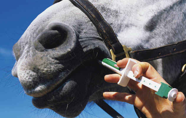Is Rotational Worming Horses Best