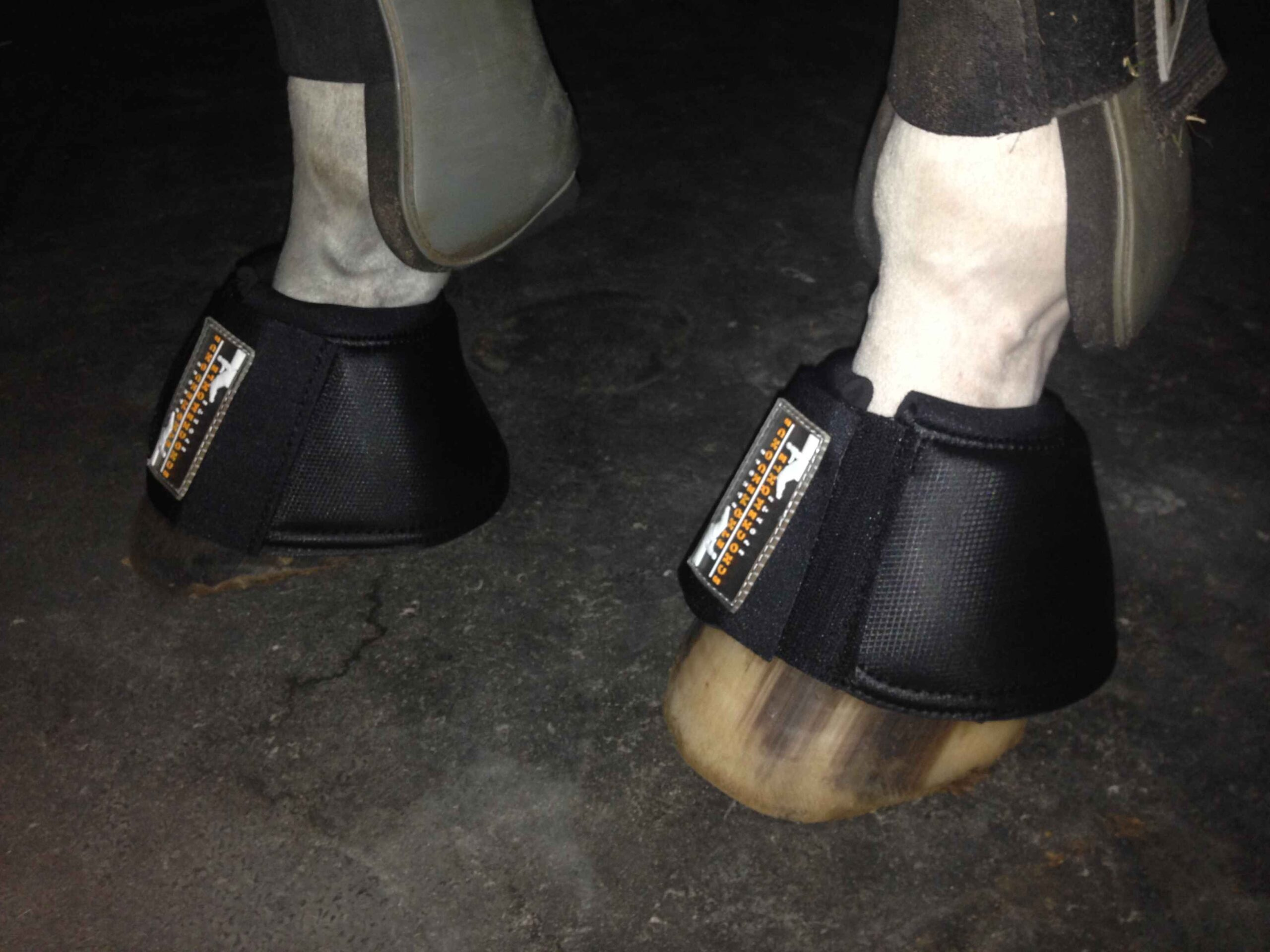 Why Do You Need Bell Boots